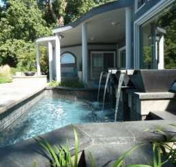 Wood St Custom pool and Outdoor Kitchen